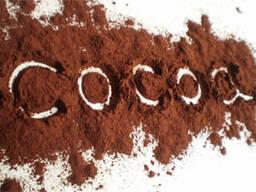 Алкализированный какао порошок 20-22%
