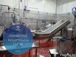 Автоматическая обработка кишечного сырья свиней