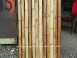 Бамбук, бамбуко забор