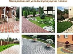 Укладка тротуарной плитки от 50м2 Зеленый Бор /Минск