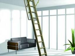 Чердачные лестницы Факро и Рото