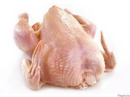 Цыпленок бройлерный, охлажденный 1-2 категории .