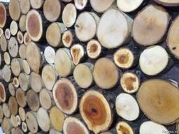 Декоративные панно из спилов дерева