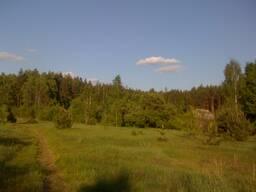 Дом на большой лесной поляне - Вокруг Лес!