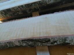 Доска берёзы не обрезная 52 мм
