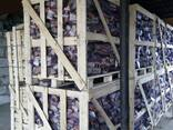 Дрова колотые в сетках - фото 1