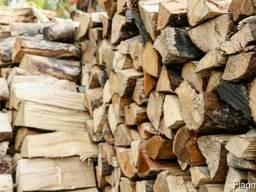 Дрова в чурках и колотые, лиственных и сосновых пород