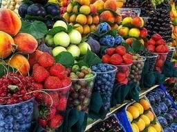 Экспорт из РУз свежей сельхозпродукции