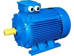 Электрические и бензиновые двигатели используемые на. ..