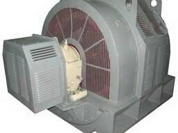 Электродвигатель СДН2-16-49-6У3 1250 кВт 1000 об. мин 6000В