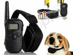 Электроошейник антилай для собак прокат, аренда