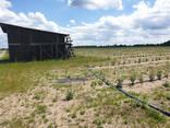 Фермерское хозяйство Брестская область - фото 7