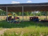Фермерское хозяйство Брестская область - фото 13