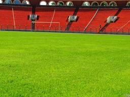 Газонная трава Спорт Профи