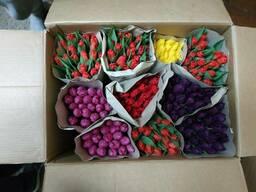 Коробки, ящики для тюльпанов пятислойные ОПТ