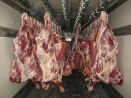 Перевозка охлажденного мяса