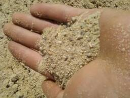 Береза купить бетон бетон мастертоп