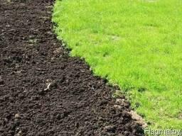 Грунт для газона
