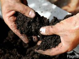 Грунт для посадки растений