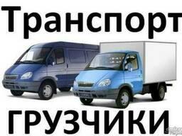 Грузоперевозки и услуги грузчиков в Гомеле.