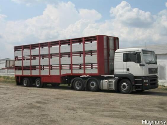 Грузоперевозки скота