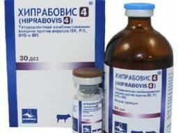 Хипрабовис - 4