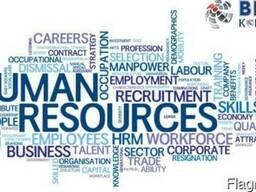 HR консультация