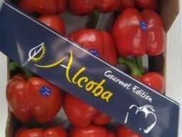 Испанские овощи. Прямые поставки