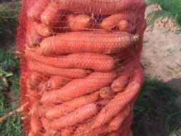 Капуста, свекла, морковь