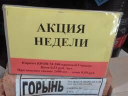 Кирпич (акция) производство Горынь в Мозыре