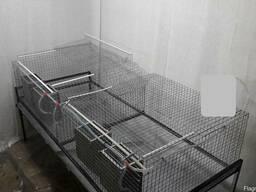 Клетка для кроликов ТКМ2-1