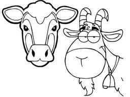 Комбикорм для коров (гранулированный)