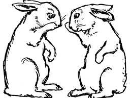 Комбикорм для кроликов К-92