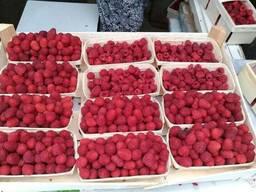 Корзинки под ягоду
