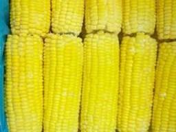 Кукуруза замороженная десертная пр-ва Индия - фото 1