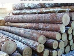 Куплю лес кругляк хвойных пород, в больших объемах