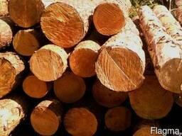 Купим лес кругляк -сосна,ель.Длина от 2.5-6 м.С доставкой ил