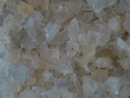 Купим полипропилен гранулу, дробленку, литники , сливы - фото 1