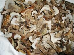 Купить белые грибы в Минске. Боровики сушенные