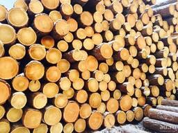 Куплю лес кругляк из ольхи 26 , доску необрезную из ольхи 1,2 сорт, цена по запросу