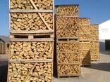 Куплю дрова ясеня - фото 1