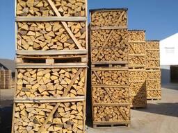 Куплю дрова ясеня