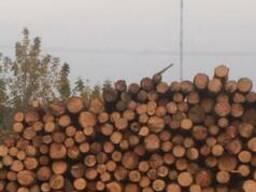 Куплю лес х/в пород сырец 14-20 , L от 1. 2 м-6 м с доставкой