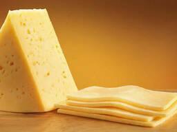 Куплю Сыр твердый