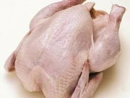 Куплю тушку цыпленка Белорусских производителей с Дисконтом