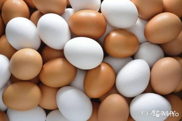 Куриное яйцо С1, С2, С0, Д1, Д2, Д0