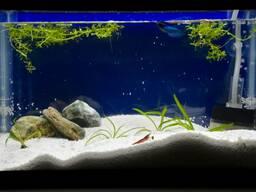 Кварцевый песок для аквариумов в пакетах по 30 кг