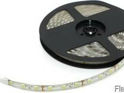 LED лента SMD 2835/60 Smartbuy-IP65-4.8W-14.4W/WW