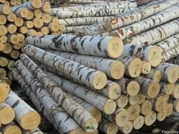 Лес кругляк береза от 18 см