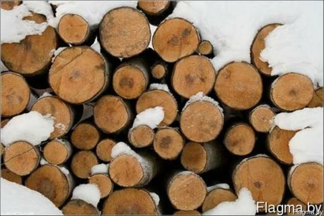 Лес кругляк, пиловочник, бревно